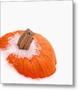 Pumpkin On Ice Metal Print