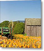 Pumpkin Patch Farm House With Halloween Decoration Metal Print