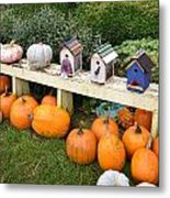 Pumpkins And Birdhouses Metal Print