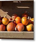 Pumpkins For Sale Metal Print