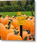 Pumpkins II Metal Print