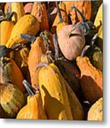 Pumpkins Up Close Metal Print