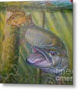 Pumpkinseed Peril Metal Print by Charles Weiss