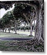 Punchbowl Cemetery - Hawaii Metal Print by Daniel Hagerman