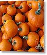 Punkin Head Metal Print