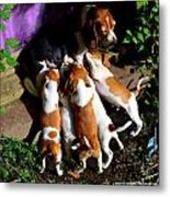 Puppy Dinner Time Metal Print