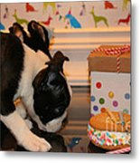 Puppy Party Metal Print