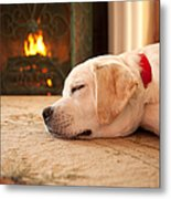 Puppy Sleeping By A Fireplace Metal Print