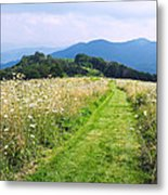 Purchase Knob Metal Print