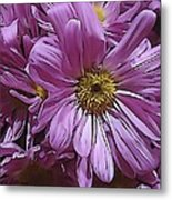 Pure Delight Metal Print