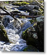 Pure Mountain Stream Metal Print