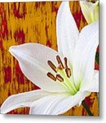 Pure White Lily Metal Print