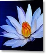 Pure White On Blue Metal Print