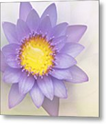 Purity And Grace Metal Print
