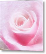 Purity And The Pink Rose Metal Print