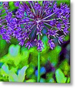 Purple Allium Flower Metal Print