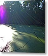 Purple Angel Of Lagoon Metal Print