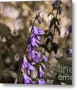 Purple Bells Metal Print