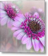Purple Blooms Metal Print