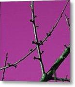 Purple Branches Metal Print