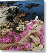 Purple Carpet And The Gulls Metal Print