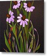 Purple Coneflowers Metal Print