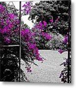 Purple Entrance Metal Print