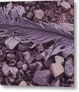 Purple Feather Metal Print