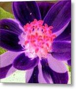 Purple Flower - Photopower 257 Metal Print