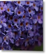 Purple Flowers 2 Metal Print