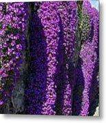 Purple Hanging Flowers Metal Print