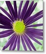 Purple Haze - Photopower 2858 Metal Print