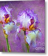 Purple Iris Metal Print by Lena Auxier