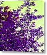 Purple Morning Metal Print