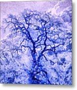 Purple Oak Tree Dream  Metal Print