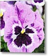 Purple Pansy Close Up - Digital Paint Metal Print