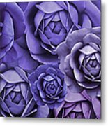Purple Passion Rose Flower Abstract Metal Print