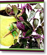 Purple Passion In The Sunshine Metal Print