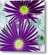 Purple Passion - Photopower 1604 Metal Print