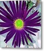 Purple Passion - Photopower 1605 Metal Print