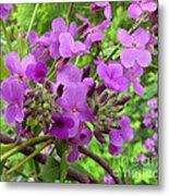 Purple Popping 2 Metal Print
