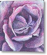 Purple Rose 2-14 Metal Print