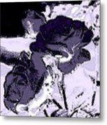 Purple Roses Metal Print