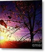 Purple Skies And Walnut Trees Metal Print