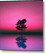Purple Sky... Metal Print