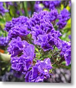 Purple Statice Flower Arrangement Metal Print