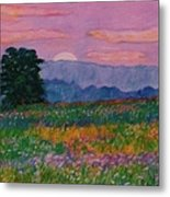 Purple Sunset On The Blue Ridge Metal Print