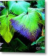 Purple Veins Metal Print