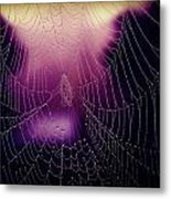 Purple Web Of Lies Metal Print