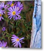 Purples And Blue Metal Print